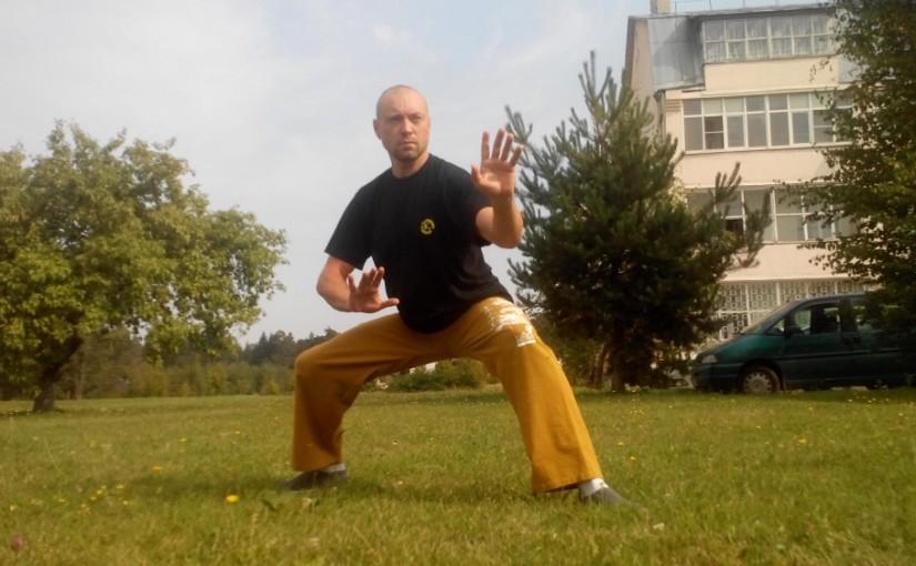 2 дневный тренинг по даосским практикам Ян Шен Гун (мастерство питания жизни)